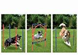 Profi Hundetrainigsset Agility 3 Übungen für Ihren Hund GRATIS TRAGETASCHE ,bereits seit 5 Jahren bewährte Qualität! Ideales Hunde Training zum günstigen Preis!