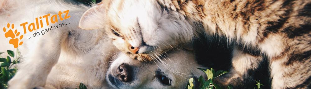 Hunde-Katzen-Pferde soll es immer gut gehen.