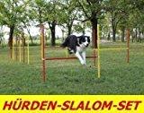 AGILITY-ÜBUNGS-HÜRDEN/SLALOM-STANGEN-SET IN ROT/GELB