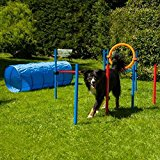 Dog Agility Set K2